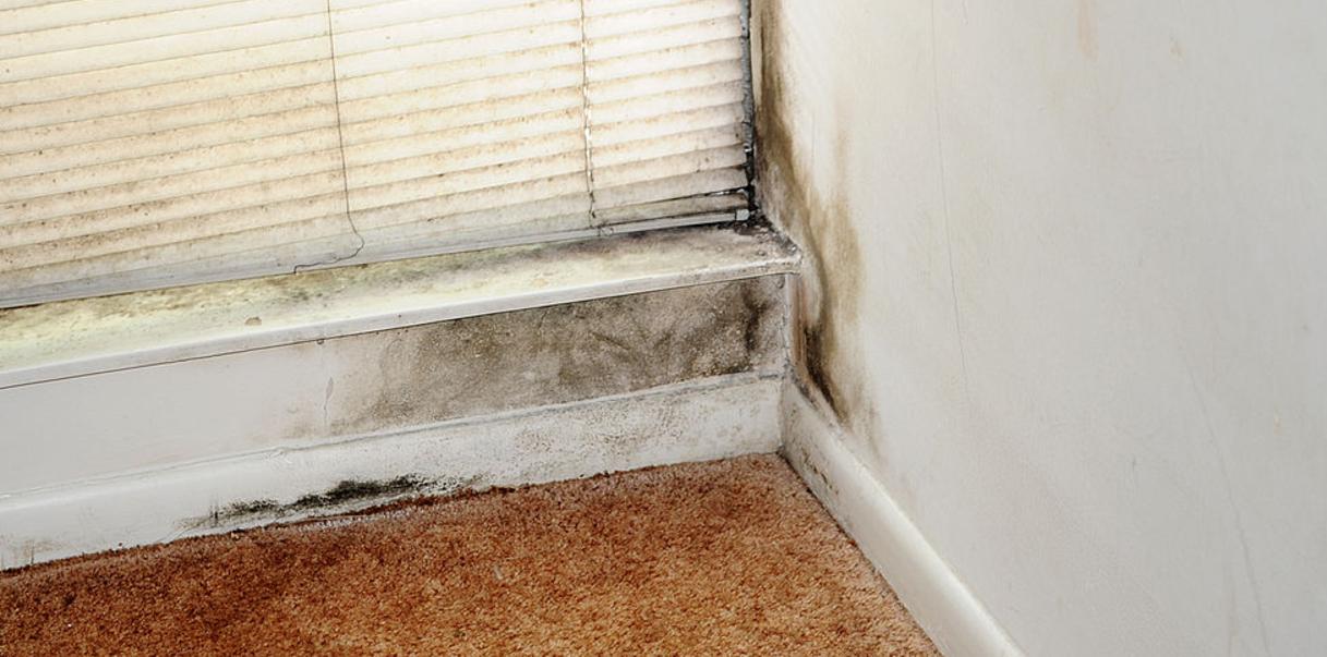 Replacing Mobile Home Floors Wet Spot