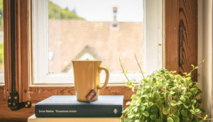 Coffee cup in front of a wooden window frame