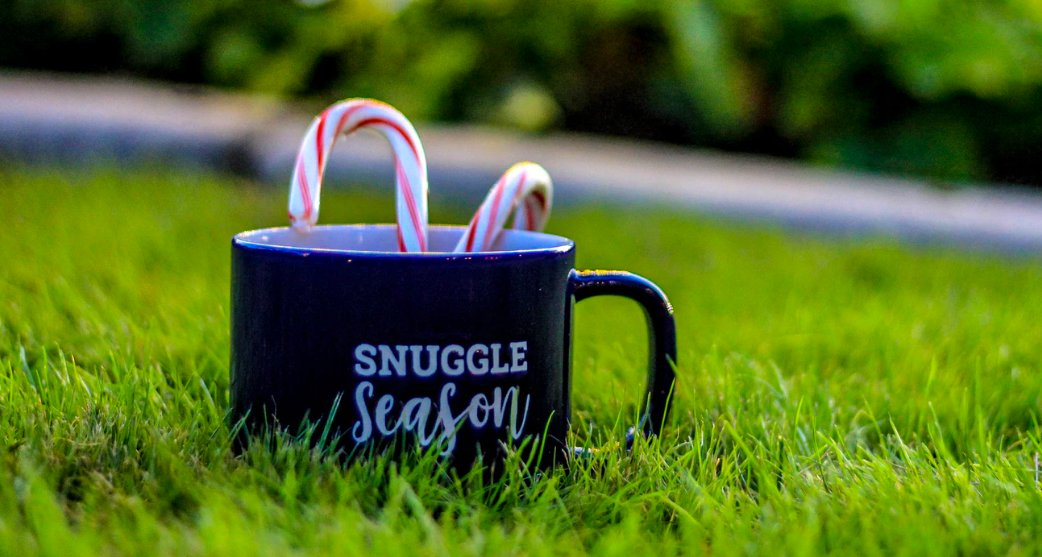 A mug with candy canes in the grass