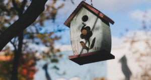 A birdhouse with a flower pattern hanging from a tree