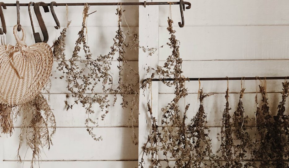 Dried flowers hanging from metal rods