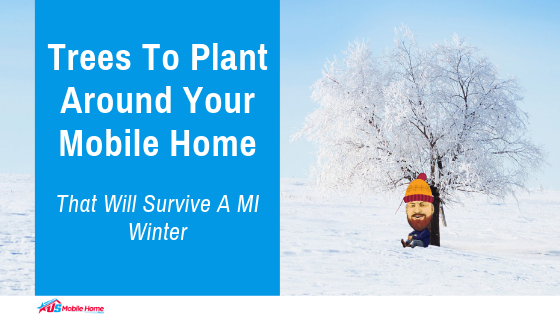 "Featured image for ""Trees To Plant Around Your Mobile Home That Will Survive A MI Winter"" blog post"