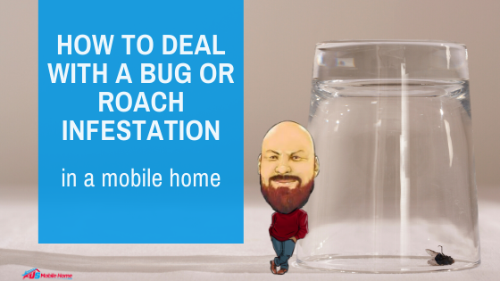 How To Deal With A Bug Or Roach Infestation In A Mobile Home