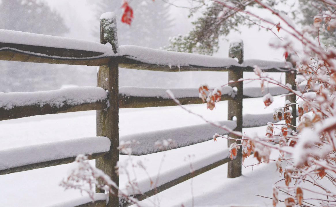Thick snow on wooden fences